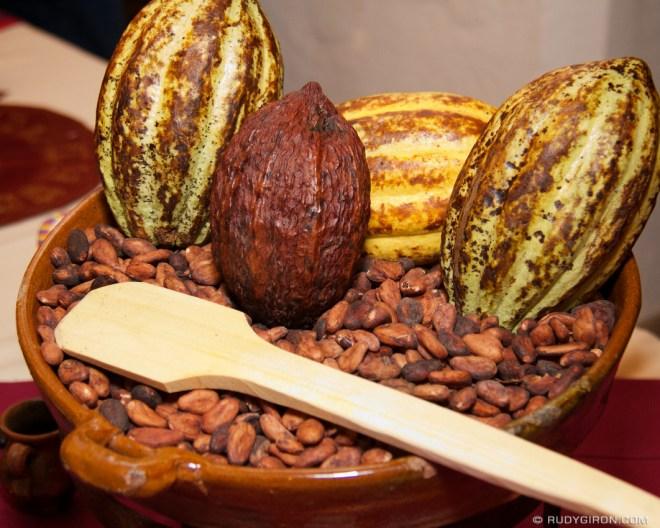 Rudy Giron: Antigua Guatemala &emdash; Cacao Pods from Guatemala