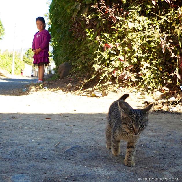 Rudy Giron: Instagrams &emdash; El gatito y la niña