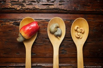Guatemalan cashew plum and cashew nuts — © Rudy Giron