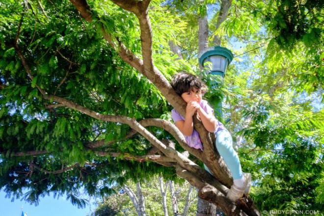 Rudy Giron: Antigua Guatemala &emdash; Sunbathing at Parque Central, Antigua Guatemala