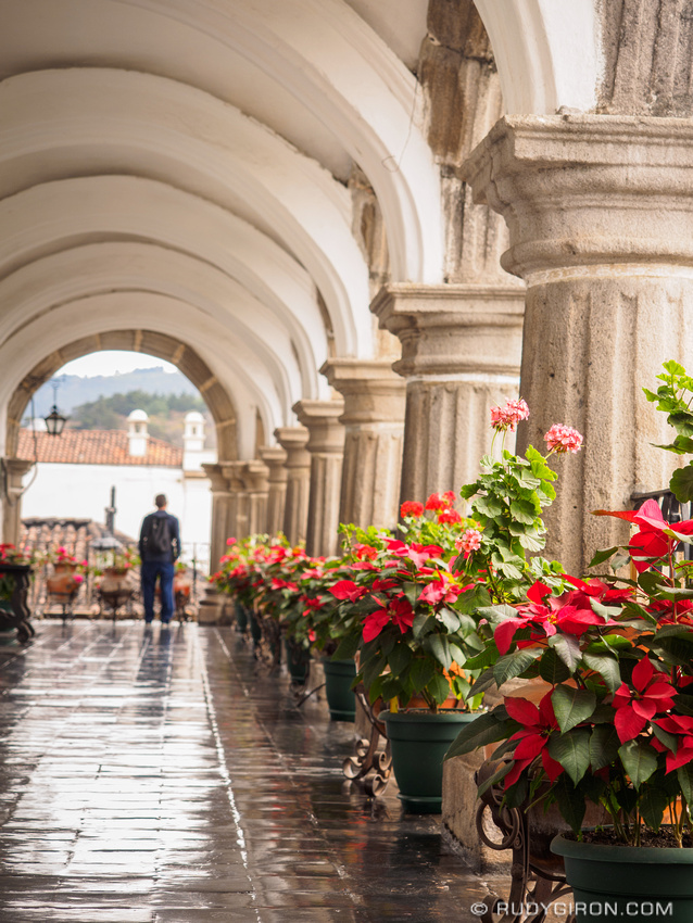 Rudy Giron: Antigua Guatemala &emdash; Poinsettias Are Everywhere in Antigua Guatemala