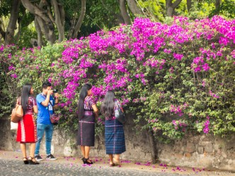 It's always picture time in Antigua Guatemala BY RUDY GIRON