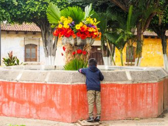 Fountain Decorated with Gerbera Flowers During the Festival de Flores of Antigua Guatemala