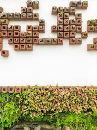 PHOTO STOCK: Organic Wall or Vertical Garden in San Gaspar Vivar, Antigua Guatemala
