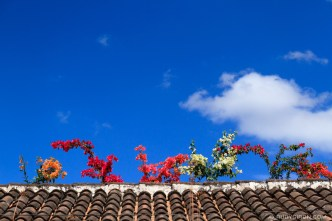 The Colors of the Eternal Spring of Antigua Guatemala