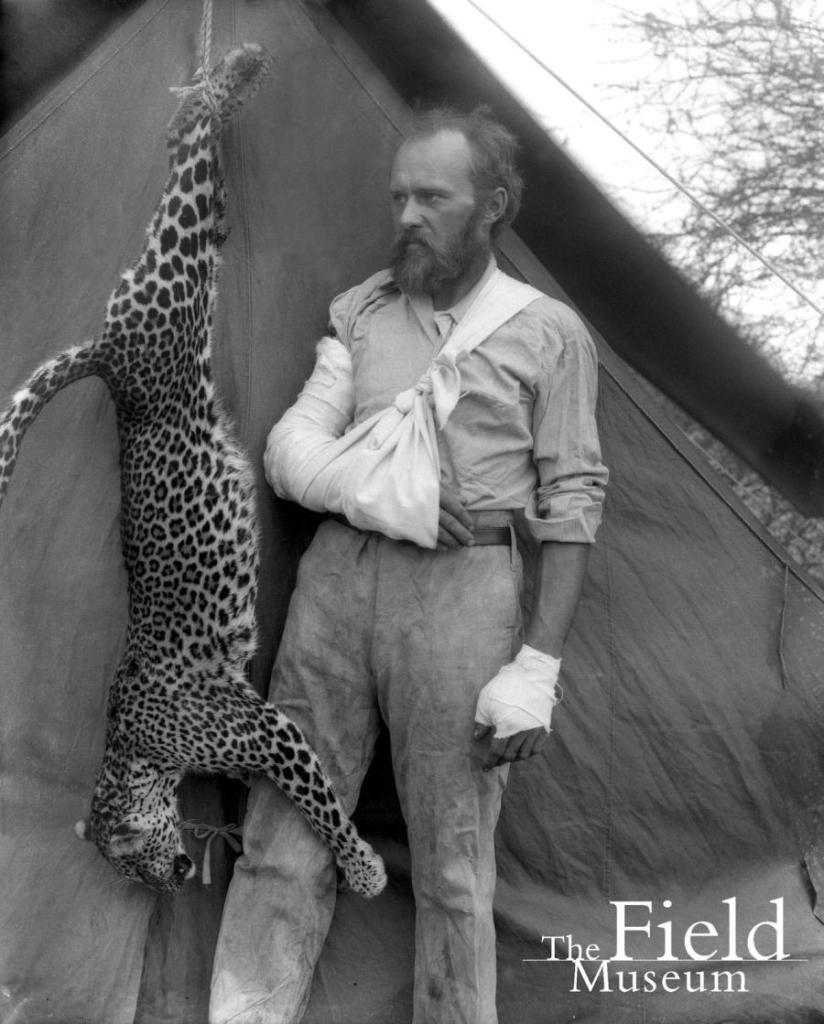 1896: Ο Carl Akeley φωτογραφίζεται με τη λεοπάρδαλη που σκότωσε με τα χέρια του όταν του επιτέθηκε.