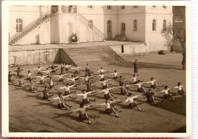 και βέβαια δε θα μπορούσαν να λείψουν οι εκδηλώσεις στο τέλος της χρονιάς...γυμναστικές επιδείξεις...