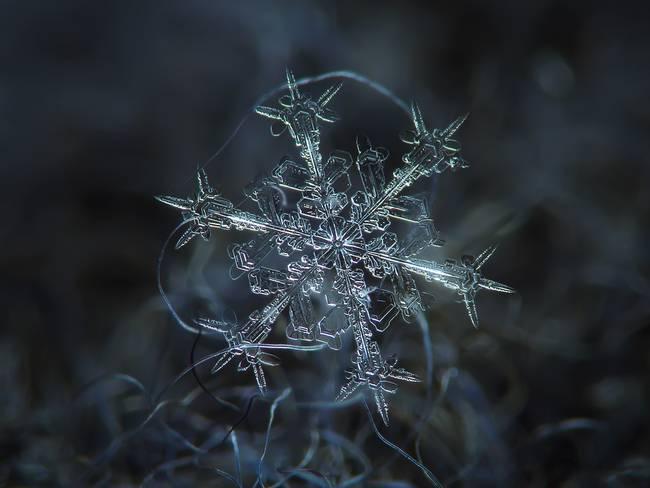 snowflakes3