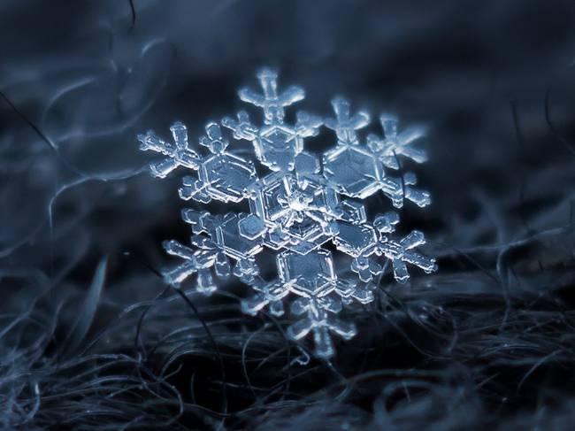 snowflakes6