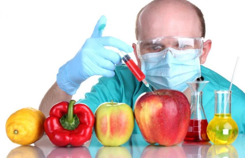 Аркадий Дворкович: Россия не будет производить ГМО-продукты