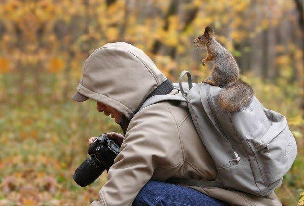 Nature-photographers6__880-625x423