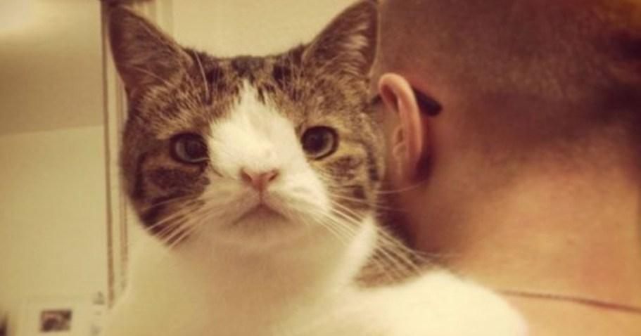 """Парень забрал """"никому ненужного"""" кота из приюта. На следующий день кот преподнес ему сюрприз"""
