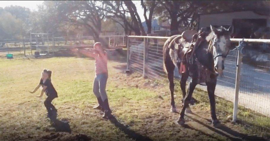 Лошадь Джексон: вы только посмотрите на ее движения!