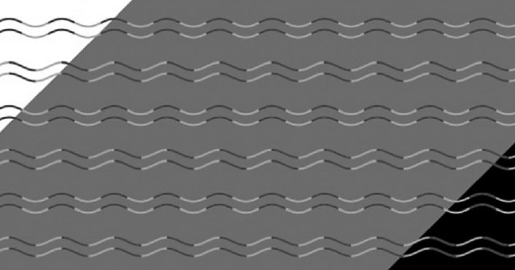 Любите оптические иллюзии? Исследователь открыл новый их вид!