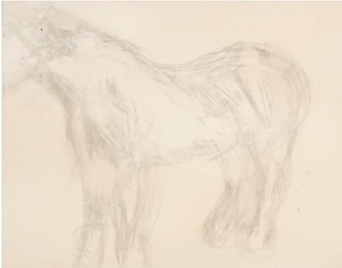 Lucian Freud sketch