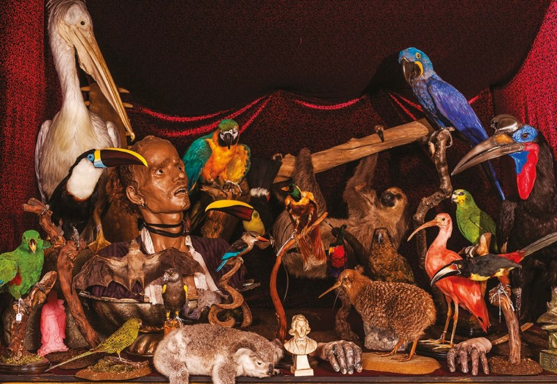 Exhibition at The Viktor Wynd Museum of Curiosities