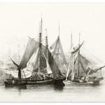 SHIPS & YACHTS