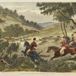 Hunting - Big game, deer, fox etc