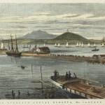 NZ Islands - Auckland, Chatham, Stewart
