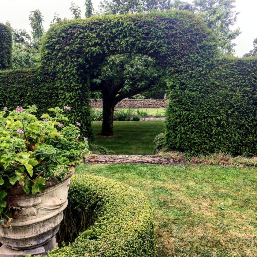 Garden Antiques in England- Ivy Hedge