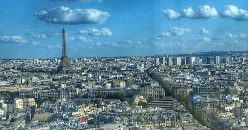 Paris Skies | Auntie Toma's Modern Day Grand European Tour | Toma Clark Haines | The Antiques Diva & Co