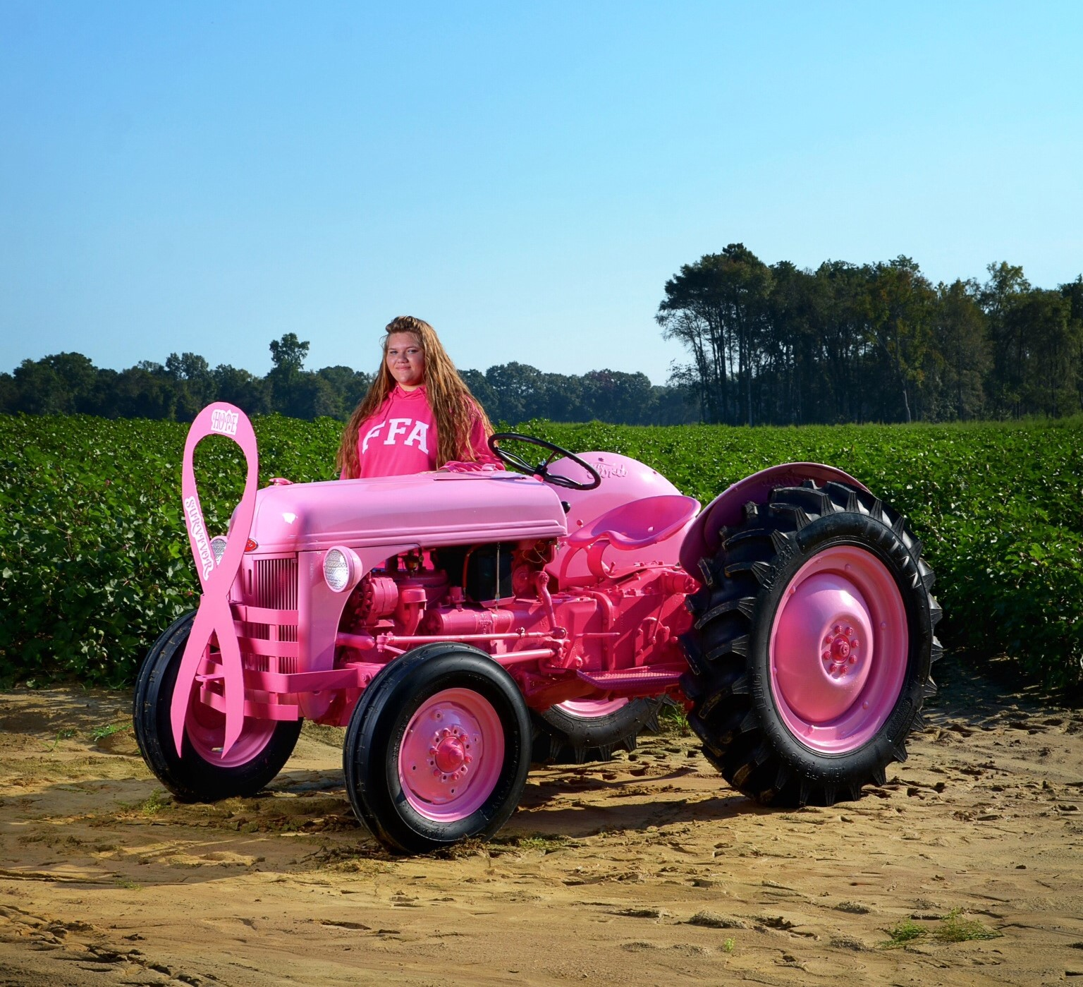 8n Ford Tractors : Ffa a pink ford n and an amazing girl antique tractor