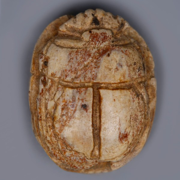 Egyptian Steatite Scarab with a Baboon