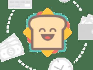 sheep_and_lamb