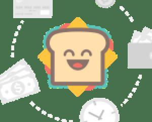 rare gull on Tiree