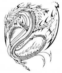 Драконы Антистрессовые раскраски