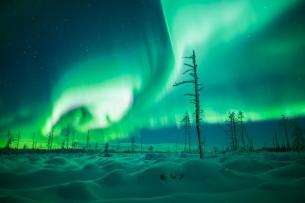 A. Pietikainen took this shot, posted by @Aurora_Zone of the UK. It's one of the most fantastic aurora shots we've ever seen: pic.twitter.com/qbA9C048jH Isn't it just magical?