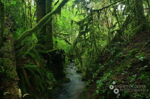 Oregon, USA