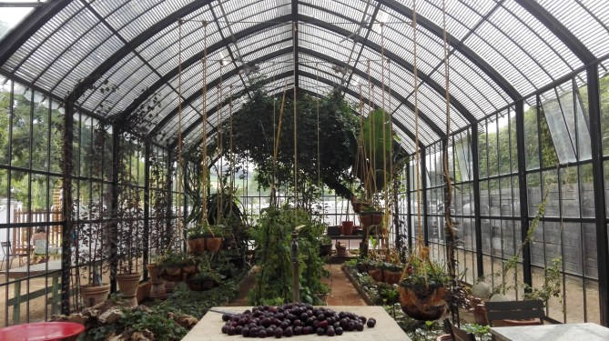 The Babylonstoren farm is located in the Cape Winelands a short drive from Cape Town. It´s one of the oldest Cape Dutch farms and offers a restaurant, winery, deli, hotel, but in the centre of it all, a magical garden.