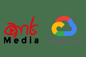 IPTV ve Ministra TV (Stalker Portal) Entegrasyonu - Ant Media