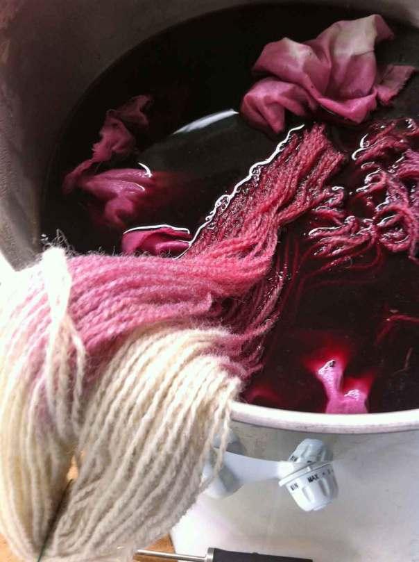 Ullgarn påbörjad färgning med fläderbär
