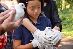 Hitomi prepares to release a dove.