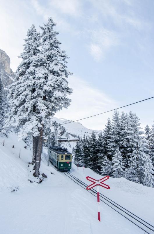 Mountain Train in Swiss winter landscape