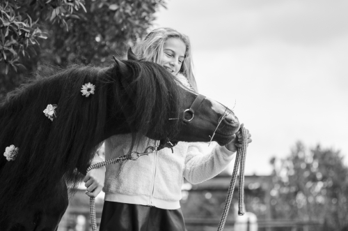 Girl and black pony stallion with flowers in mane