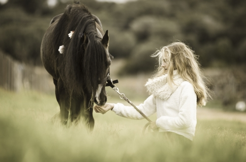 Girl and black pony stallion with flowers in mane in a field of wheat