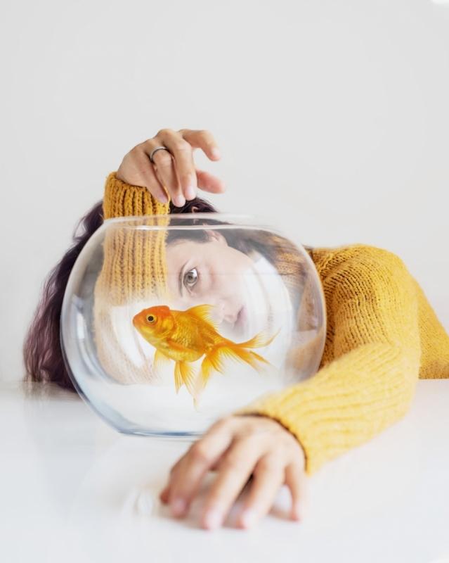 Art Photography Goldfish
