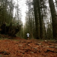 Courses: Antonine Trail Race