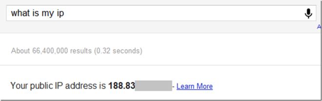 GoogleMyIp
