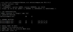 DIG – Testar configuração DNS