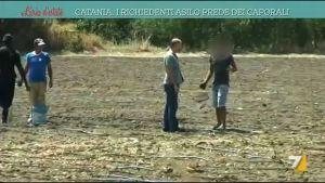 Catania, i richiedenti asilo prede dei caporali-1