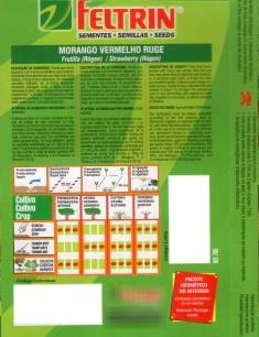 morango_verso