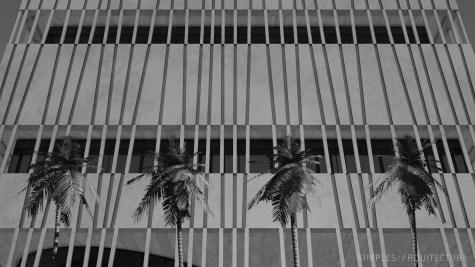 simples_arquitectura - concept_building img_004