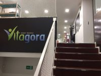 Vitagora (La linea de la concepción)