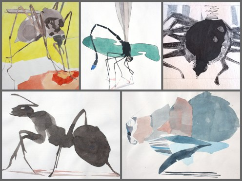 collage insectos 2 gris