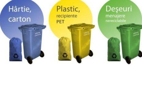 Idei de afaceri: Centru de colectat deșeuri în spațiul rural
