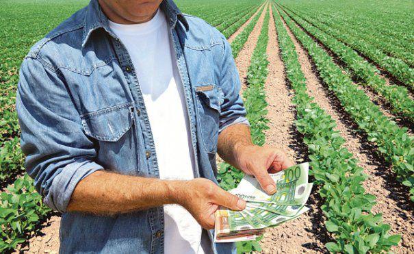 Finanțarea afacerilor agricole și non-agricole în mediul rural
